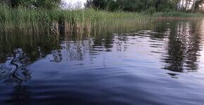 Рыбалка в Синево