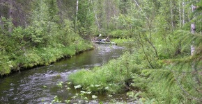 Азика река