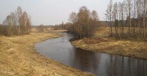 Река Коваши