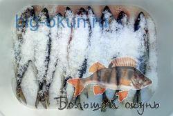 засолка рыбы перед вялением