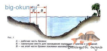как найти перспективное пространство ловли карпа