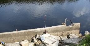 Рыбалка на новоладожском канале