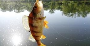 рыбалка на майские праздники